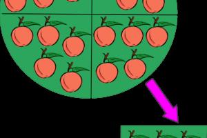 Ejemplos de divisiones